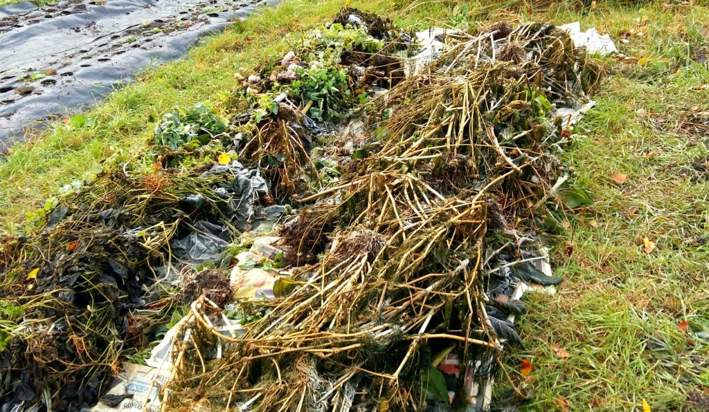 kompostipenkki