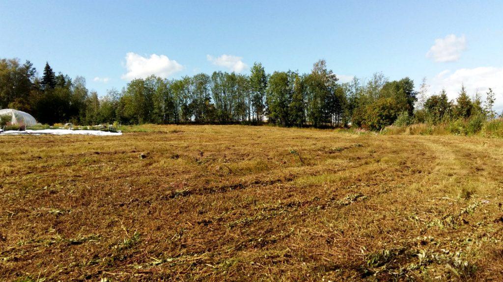 vanhan pellon kunnostus