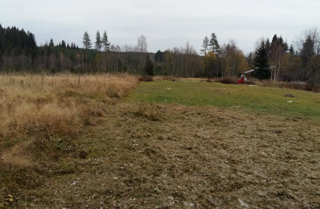 vanha pelto, puskasta pelloksi - vanhan pellon kunnostus